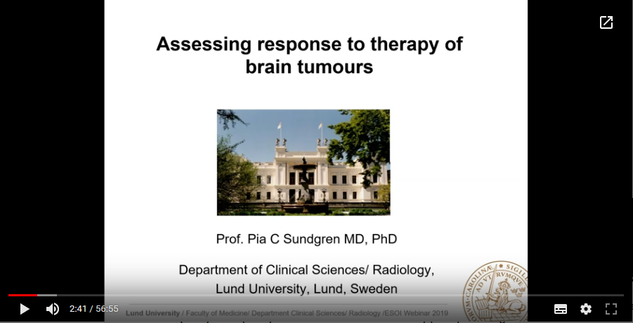 Assessing response to therapy of brain tumours (2019)